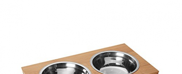 Petlo Elevated Dog and Cat Pet Feeder, Double Bowl Raised Stand Comes with Two Stainless Steel Bowls (Small)