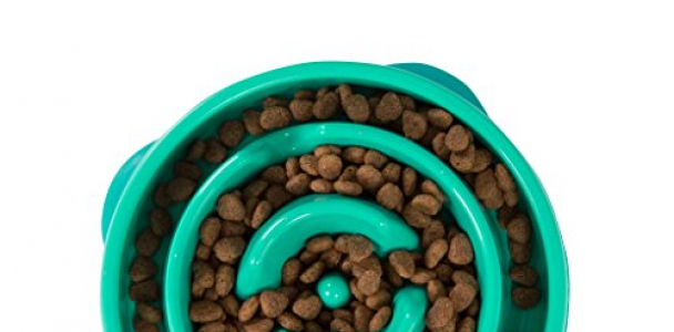 Slow Feeder Dog Bowl Fun Feeder Stop Bloat Bowl for Dogs by Outward Hound, Small, Teal