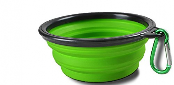 Sabuy Collapsible Dog Travel Bowl, Set of 2 Pet Pop-up Food Water Feeder Foldable Portable Bowls with Carabiner Clip, Blue and Green