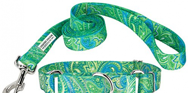 Country Brook Design Green Paisley Martingale Collar & Leash – Large