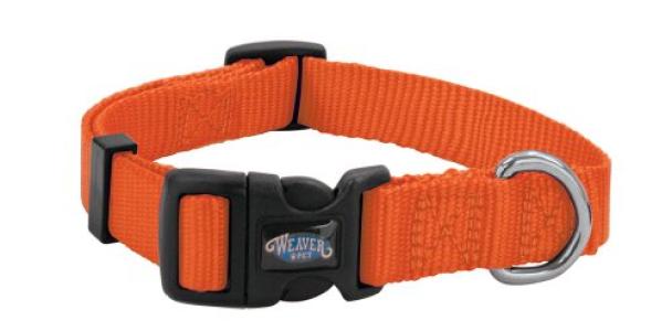Weaver Leather Prism Snap-N-Go Collar, Small, Blaze Orange