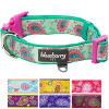 Blueberry Pet 7 Colors Soft & Comfy Paisley Flower Print Neoprene Padded Dog Collar, Emerald Green, Medium, Neck 14.5″-20″, Adjustable Collars for Dogs