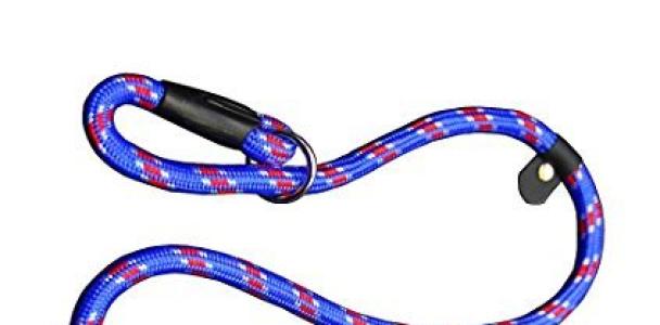 Coolrunner Pet Dog Whisperer Cesar Slip Training Leash Lead Collar (Blue)