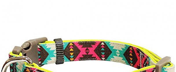 Blueberry Pet 5 Colors Soft & Comfy Vintage Tribal Pattern Padded Dog Collar, Extravagant Green, Medium, Neck 14.5″-20″, Adjustable Collars for Dogs