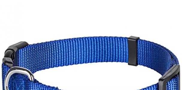 Blueberry Pet 12 Colors Classic Dog Collar, Royal Blue, Small, Neck 12″-16″, Nylon Collars for Dogs