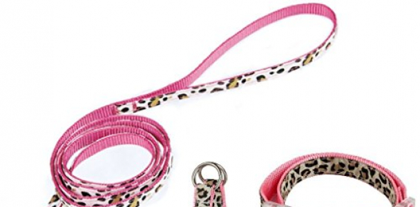 PAWZ Road Leopard Pet Leash Collar Harness Set Pink S