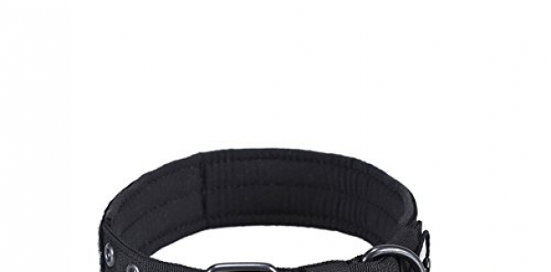 OneTigris Military Adjustable Dog Collar with Metal D Ring & Buckle Available in 3 Colors & 2 Sizes (Black, L)