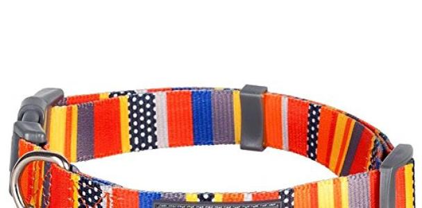 Blueberry Pet Nautical Flags Inspired Designer Basic Dog Collar, Neck 14.5″-20″, Medium, Collars for Dogs