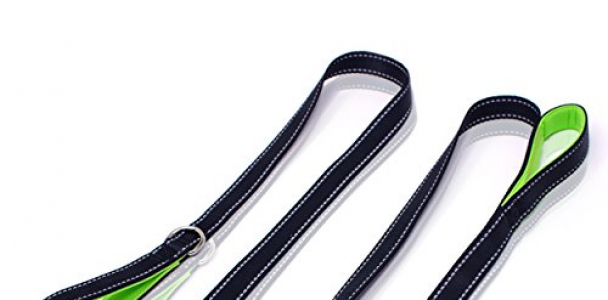 Heavy Duty Dog Leash – 2 Handles by Paw Lifestyles – Padded Traffic Handle For Extra Control, 7ft Long – Perfect For Medium to Large Dogs