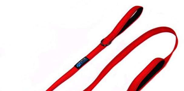 Max and Neo™ Double Handle Traffic Dog Leash Reflective – We Donate a Leash to a Dog Rescue for Every Leash Sold (RED)