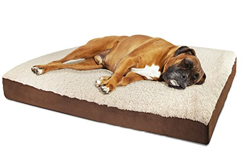 OxGord Orthopedic Pet Bed Foam-Mattress for Dogs & Cats - Quilted Rectangular Fits Crate Carrier - Medium 30 Long x 20 Wide