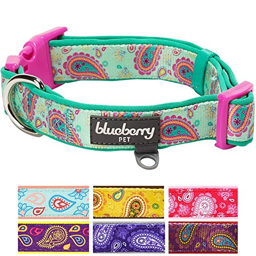 Blueberry Pet 7 Colors Soft & Comfy Paisley Flower Print Neoprene Padded Dog Collar, Emerald Green, Medium, Neck 14.5