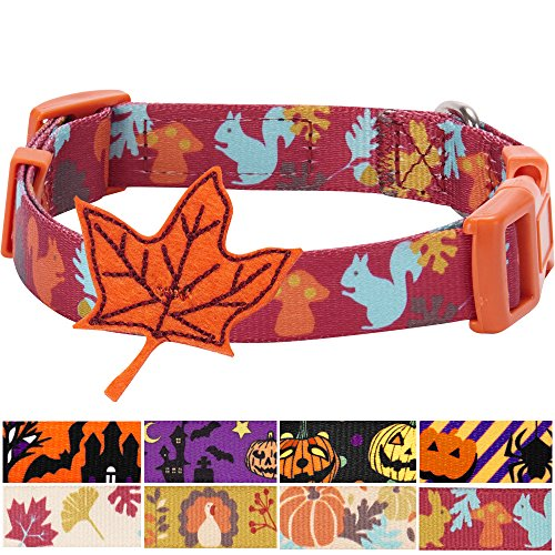 Blueberry Pet 4 Patterns Fall Fun Enchanting Squirrel Designer Dog Collar with Maple, Small, Neck 12