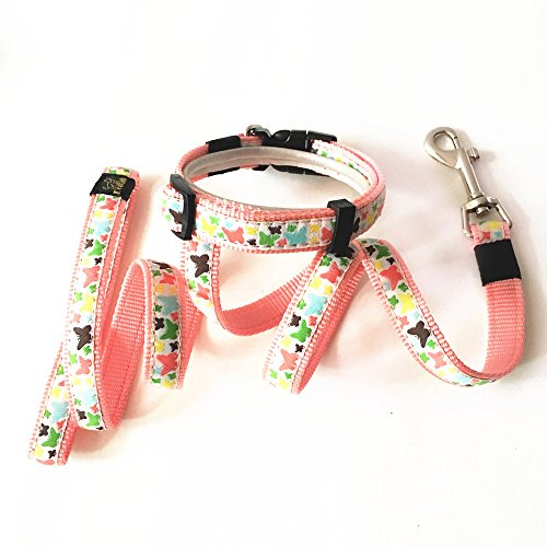 Joopet Fashion Classic Butterfly Printed Lovely Basic Pet Collars Nylon Dog Collars leash Made For Puppy Pet, Matching Leads & collars Set Available Pink (M)